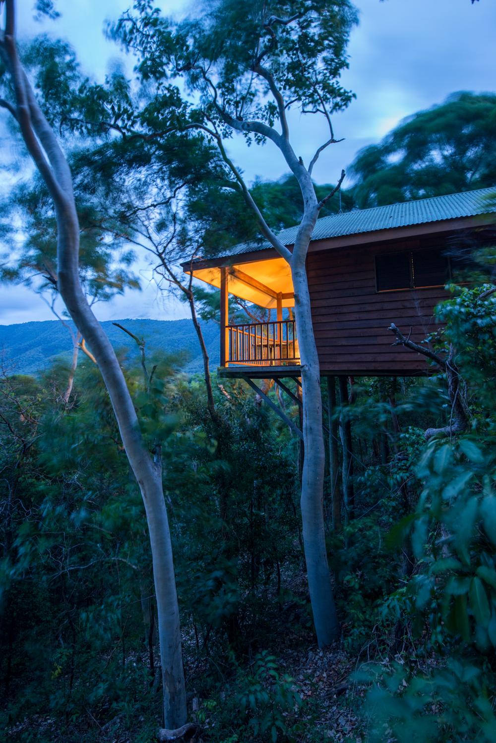 http://www.thalabeach.com.au/wp-content/uploads/2010/07/Thala_Beach_Nature_Reserve_2016__148.jpg