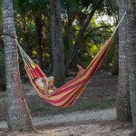 Hammock in palm grove at Oak Beach