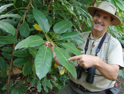 Guided Bird Walk - Umbrella Plant