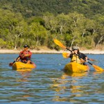 sea kayaking off the port douglas coast