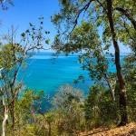 Coral Sea views from walking trails
