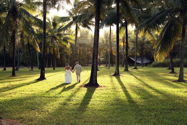 http://www.thalabeach.com.au/wp-content/uploads/2012/03/Coconut-Plantation.jpg