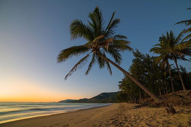 sunrise thala