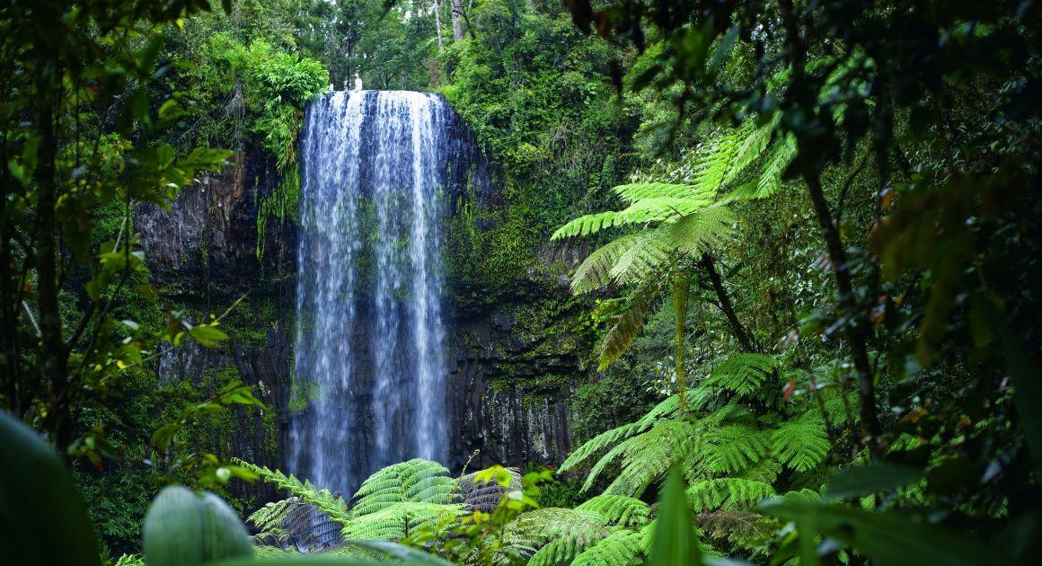 Milla Milla Falls, Atherton Tablelands