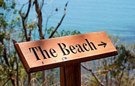 Thala Beach Contact
