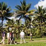 Coconut odyssey tour through Thala's coconut plantation