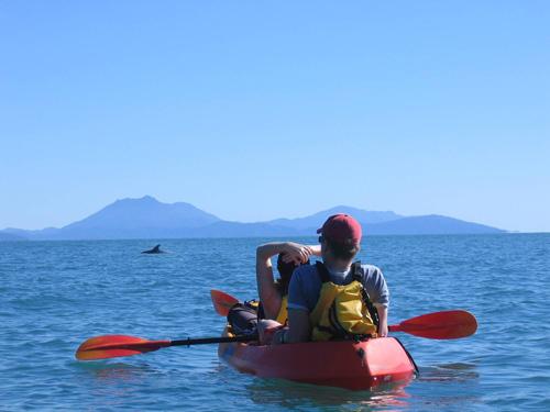 https://www.thalabeach.com.au/wp-content/uploads/2010/07/Dolphins-sea-kayak-Thala.jpg