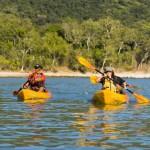 Guided sea kayaking tour