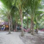 Herbies Beach Shack function area on Oak Beach