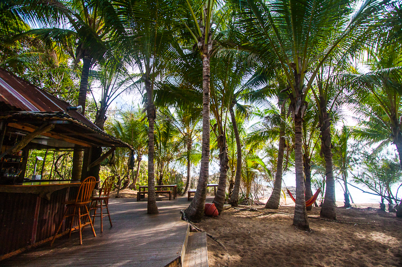 https://www.thalabeach.com.au/wp-content/uploads/2010/07/Thala_Beach_Nature_Reserve-8691.jpg
