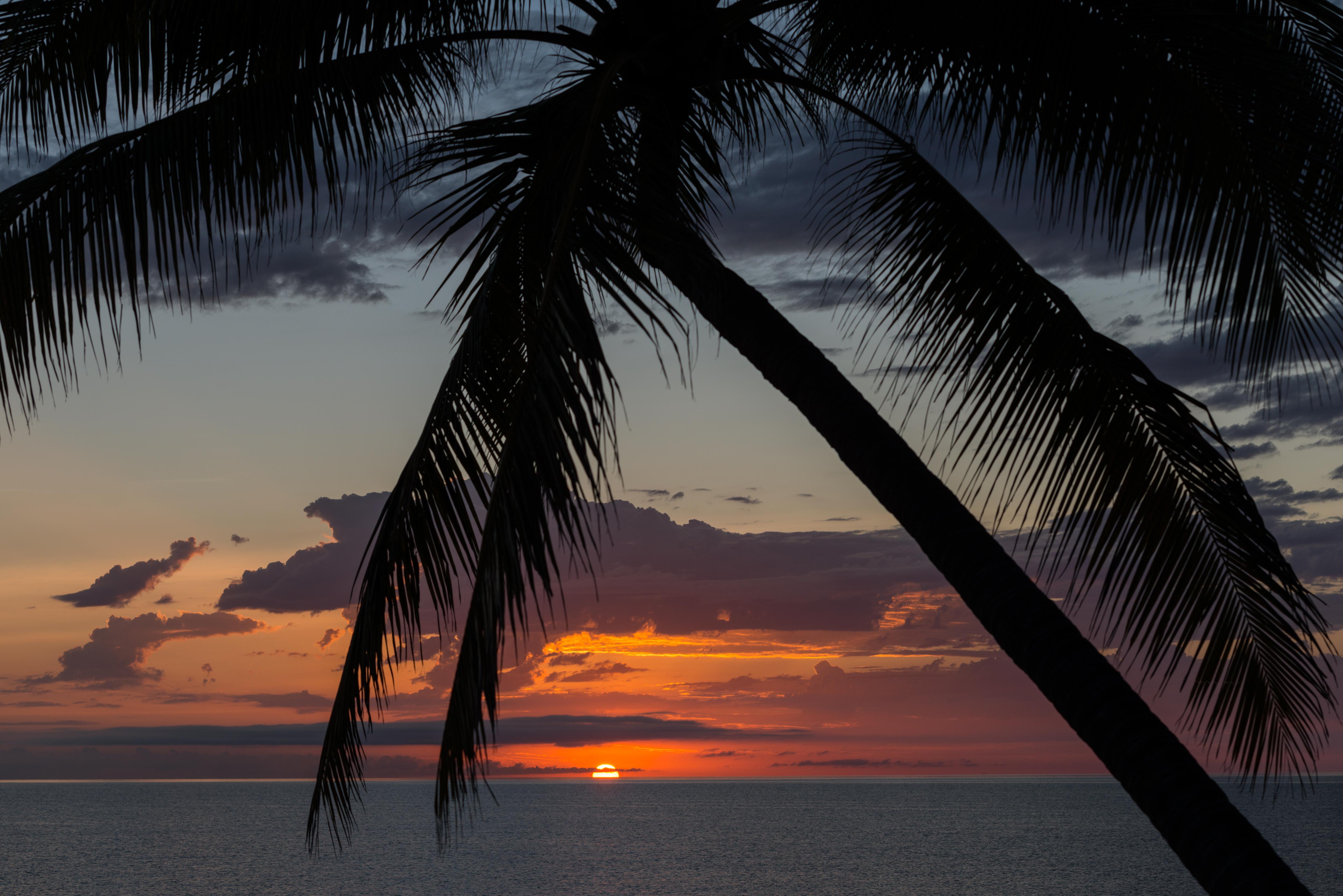 https://www.thalabeach.com.au/wp-content/uploads/2010/07/Thala_Beach_Nature_Reserve_2016__51.jpg