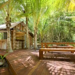 Herbies Beach Shack Port Douglas
