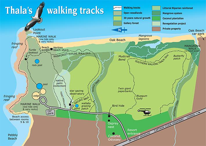 Nature Walks at Thala Beach Lodge