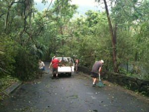 Cyclone Yasi 2011 - Cleanup at Thala 1