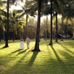Coconut Plantation Wedding