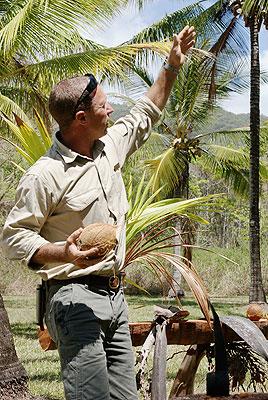 coconut benefits tour
