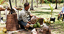 Coconut Tour