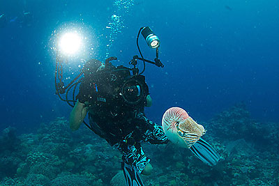 great barrier reef filming