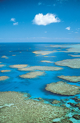 great barrier reef helicopter