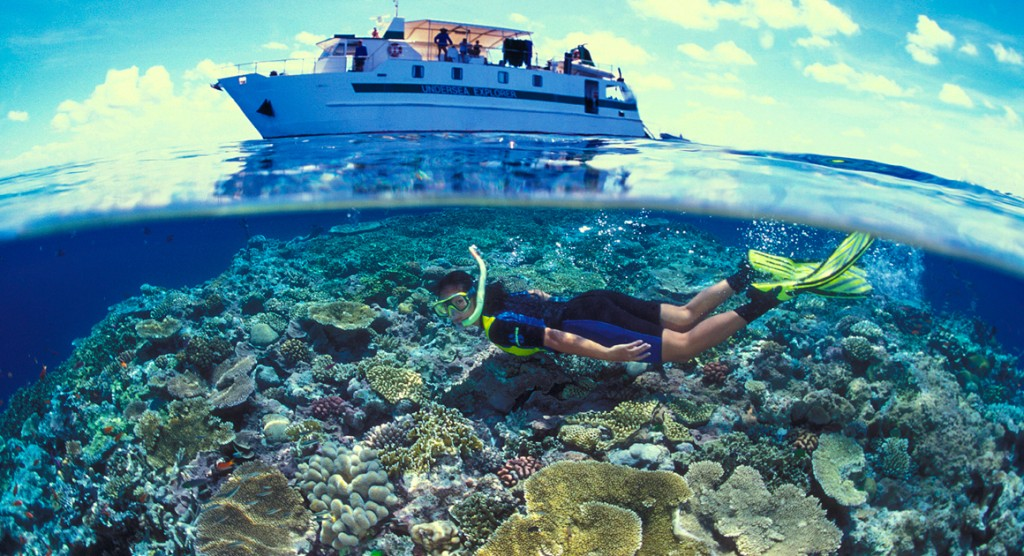 Boat & Snorkelling - Great Barrier Reef