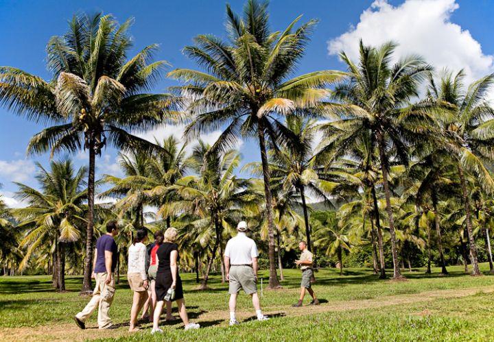Coconut Odyssey Tour