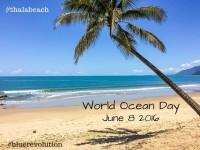 World-Ocean-Day-Blue-Revolution-crop