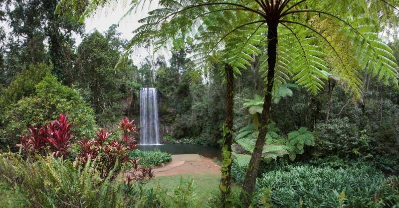 Milla Millaa Falls Atherton Tablelands