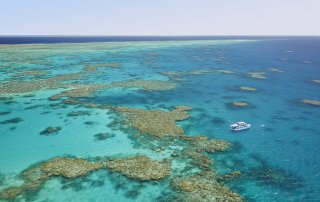 Tourism Tropical North QLD   Thala Beach Nature Reserve   Great Barrier Reef