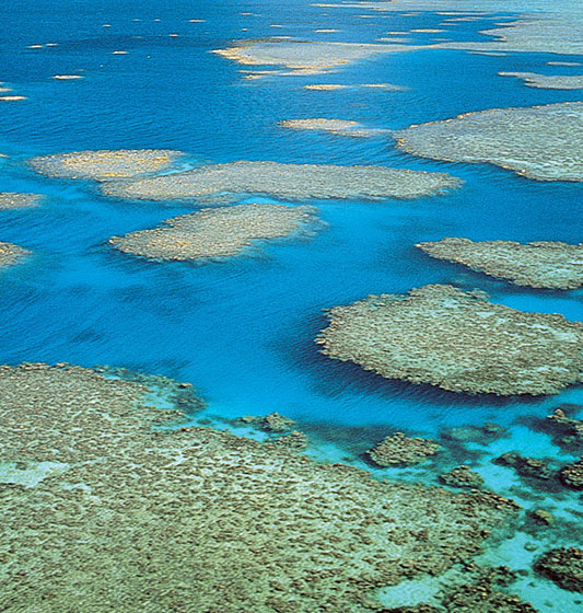 the great barrier reef location